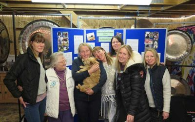 The Canine Epilepsy Support Group