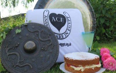 ACE Gong Fundraiser